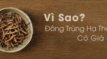 vi-sao-dong-trùg-ha-thao-lai-co-gia-cao-4