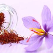 Nhụy hoa nghệ tây – Saffron 3