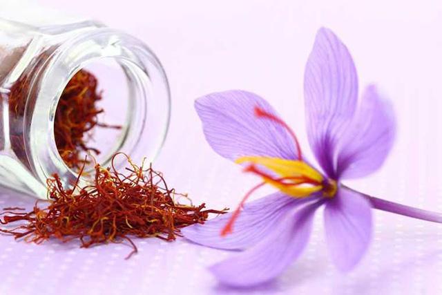 Nhụy hoa nghệ tây - Saffron 3